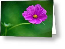 Bohemian Garden Magenta Greeting Card