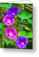 Bohemian Garden Morning Glory Greeting Card