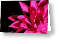 Bold Lily Greeting Card