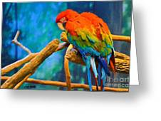 Bold Parrot Greeting Card
