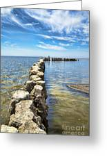 Bombay Beach 2 Greeting Card