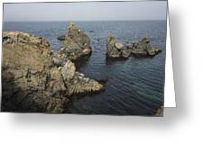 Bonavista Rocks Greeting Card