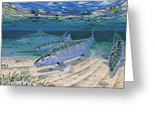 Bonefish Flats In002 Greeting Card