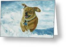 Bongo In The Snow Greeting Card