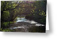 Bonne Femme Creek Greeting Card