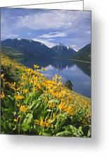 M-05921-bonneville Mountain Reflected In Wallow Lake Greeting Card