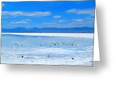 Bonneville Salt Flats After The Rain Greeting Card