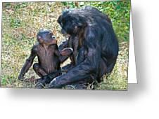Bonobo Adult Talking To Juvenile Greeting Card