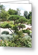 Bonsai In The Park Greeting Card