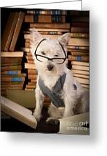 Bookworm Dog Greeting Card