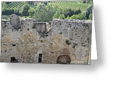 Bordeaux Castle Ruins With Vineyard Greeting Card