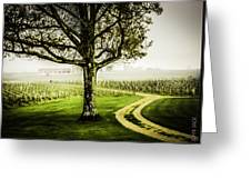 Bordeaux Vineyard Greeting Card