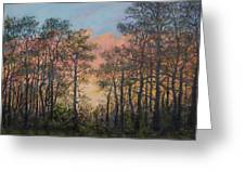 Border Pines Greeting Card
