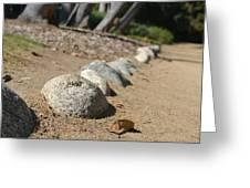 Bordered Pathway Greeting Card by Kiros Berhane
