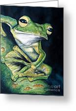 Boreal Flyer Tree Frog Greeting Card