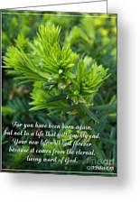 Born Again Greeting Card