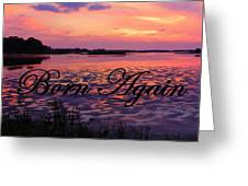 Born Again  Greeting Card by Sheri McLeroy
