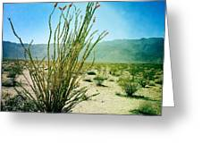 Borrego Desert Greeting Card