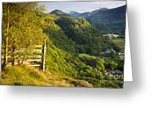 Borrowdale Valley - Lake District Greeting Card