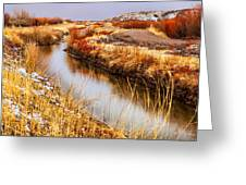 Bosque Canal Greeting Card