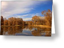 Bosque Del Apache Reflections Greeting Card