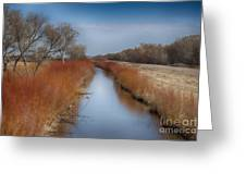 Bosque Del Apache Wetlands- New Mexico Greeting Card