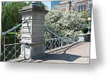 Public Garden - Boston Massachusetts Greeting Card