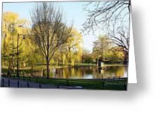 Boston Public Gardens Greeting Card
