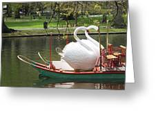 Boston Swan Boats Greeting Card by Barbara McDevitt