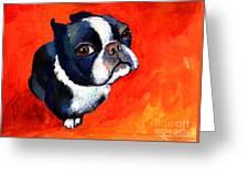 Boston Terrier Dog Painting Prints Greeting Card