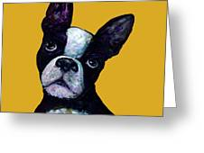 Boston Terrier On Yellow Greeting Card