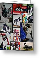 Boston Terrier Watercolor Collage Greeting Card