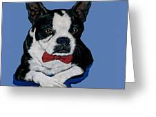 Boston Terrier With A Bowtie Greeting Card