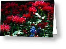 Botanic Garden Abstract Greeting Card