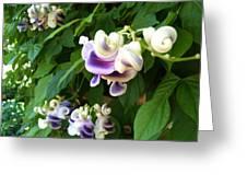 Botanic Garden Flower Greeting Card