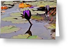 Botanical Garden Lotus Flowers Greeting Card
