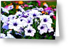 Botanical Medley Greeting Card