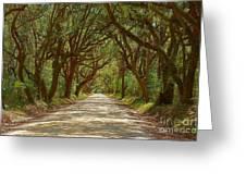 Botany Bay Road On Edisto Island Greeting Card