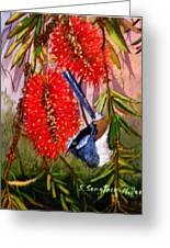 Bottle Brush And Wren Greeting Card