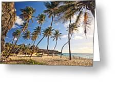 Bottom Bay Beach In Barbados Caribbean Greeting Card