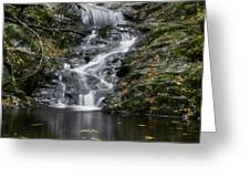 Bottom Half Of Tannery Falls Greeting Card