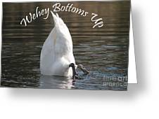 Bottoms Up Greeting Card