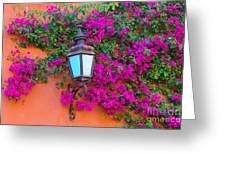 Bougainvillea And Lamp, Mexico Greeting Card