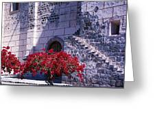 Bougainvillea And Stone Wall Greeting Card