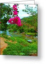 Bouganvilla Watches Over Village Fishing Boats Greeting Card