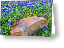 Boulder And Bluebonnets Greeting Card