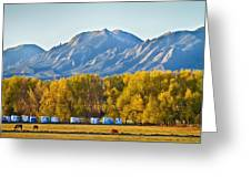 Boulder County Colorado Flatirons Autumn View Greeting Card