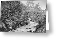 Boulder Creek Winter Wonderland Black And White Greeting Card