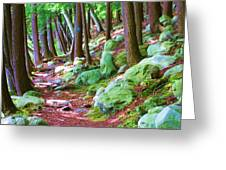 Boulder Forest Greeting Card