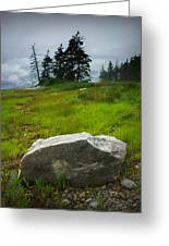 Boulder On The Shore At The Mount Desert Narrows In Maine Greeting Card